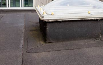 disadvantages of  flat roofs